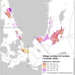 Skyddsvärda områden för tumlare i svenska vatten