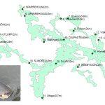 eDNA-technology detected 18 fish species including sheatfish in lake Båven