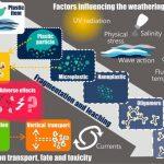 Artikel om mikroplastens vittringsprocesser