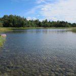 Undervattensmiljöer längs Gårdskärskusten i Uppsala län kartlagda
